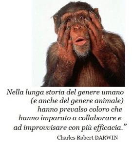Darwin scimmia e collaborazione