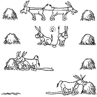 collaborazione asini